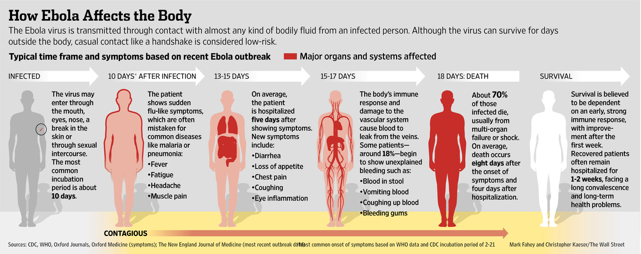EBOLA-How It Affects The Body  10/23/14