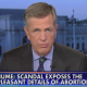 Brit Hume - Planned Parenthood scandal