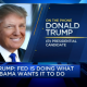 Trump on Fed and low rates