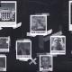 Project Veritas video suspects