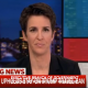 Maddow on Immigration court ruling