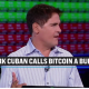 Bitcoin-Mark Cuban calls bitcoin a bubble