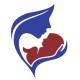 Valor America Logo