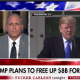 Carlson - Mark Morgan-Trump-Border wall emergency